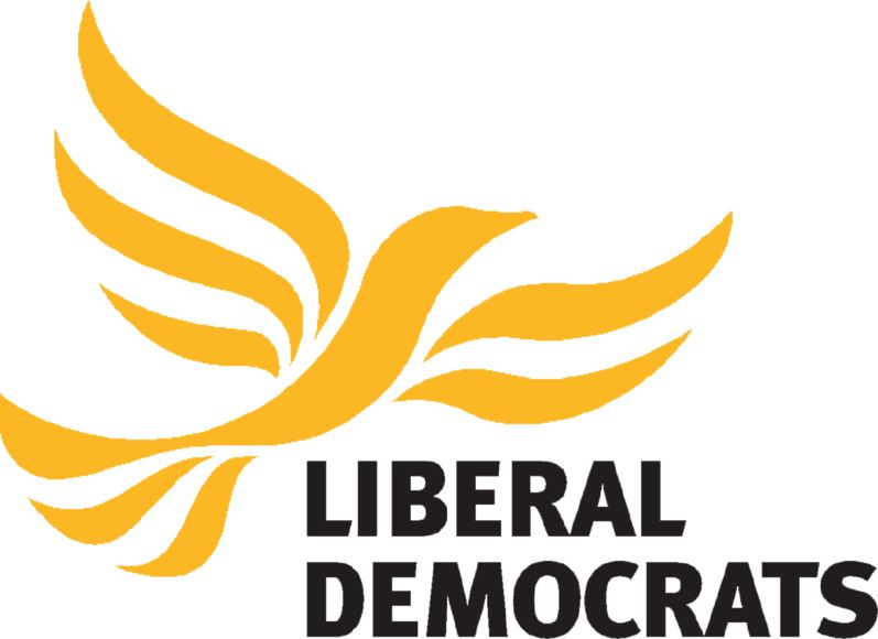 a discussion on the liberal democrats and welfare reform
