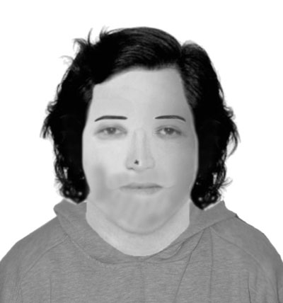 E-Fit, Cyfarthfa Pk suspect